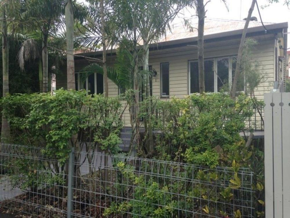 Two bedrooms plus study in leafy street